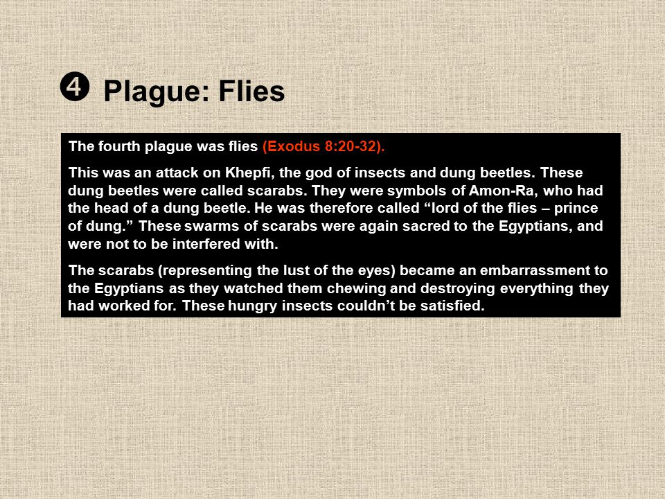  Plague: Flies The fourth plague was flies (Exodus 8:20-32). This was an attack on Khepfi, the god of insects and dung beetles. These dung beetles we