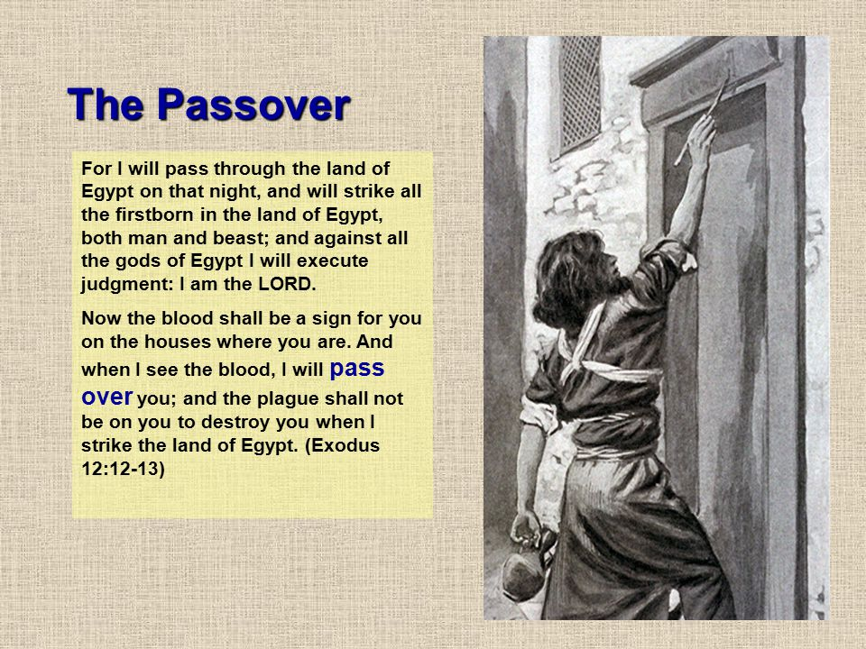 For I will pass through the land of Egypt on that night, and will strike all the firstborn in the land of Egypt, both man and beast; and against all t