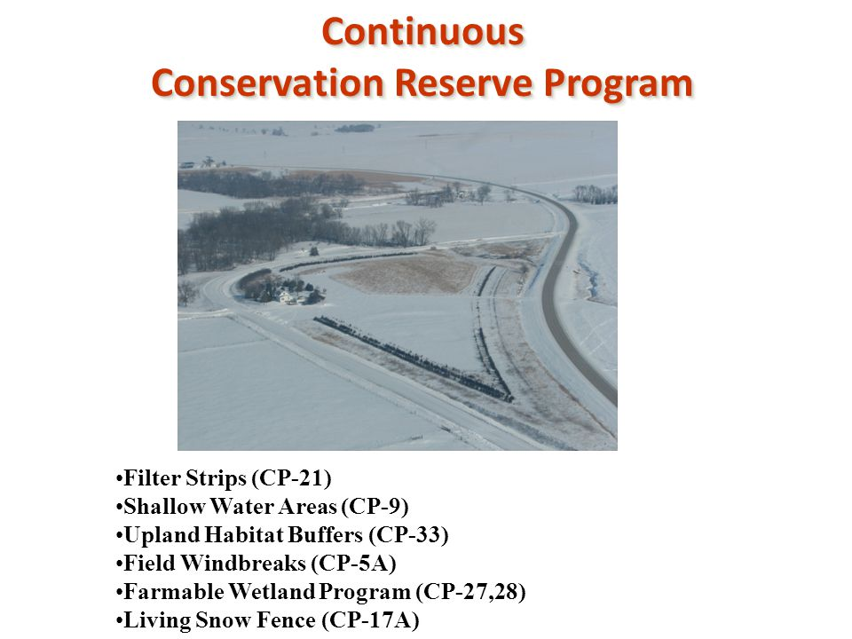 Continuous Conservation Reserve Program Continuous Filter Strips (CP-21) Shallow Water Areas (CP-9) Upland Habitat Buffers (CP-33) Field Windbreaks (CP-5A) Farmable Wetland Program (CP-27,28) Living Snow Fence (CP-17A)
