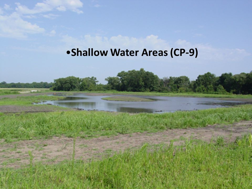 Shallow Water Areas (CP-9)