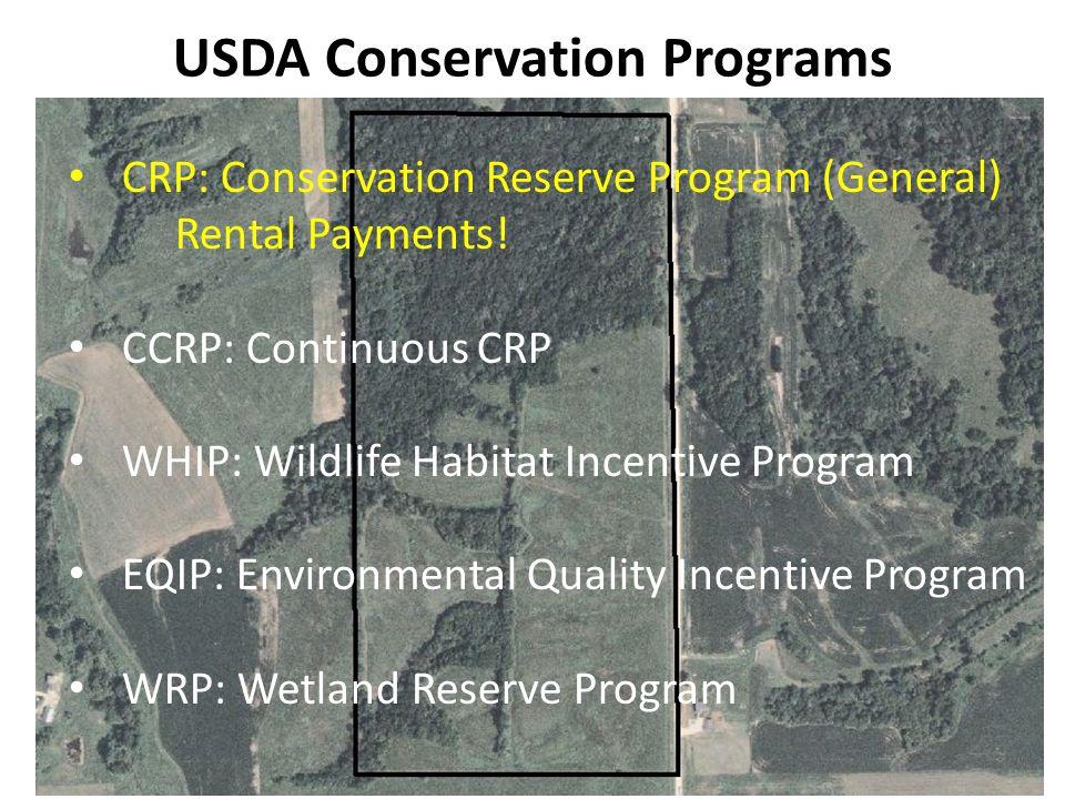 USDA Conservation Programs CRP: Conservation Reserve Program (General) Rental Payments! CCRP: Continuous CRP WHIP: Wildlife Habitat Incentive Program