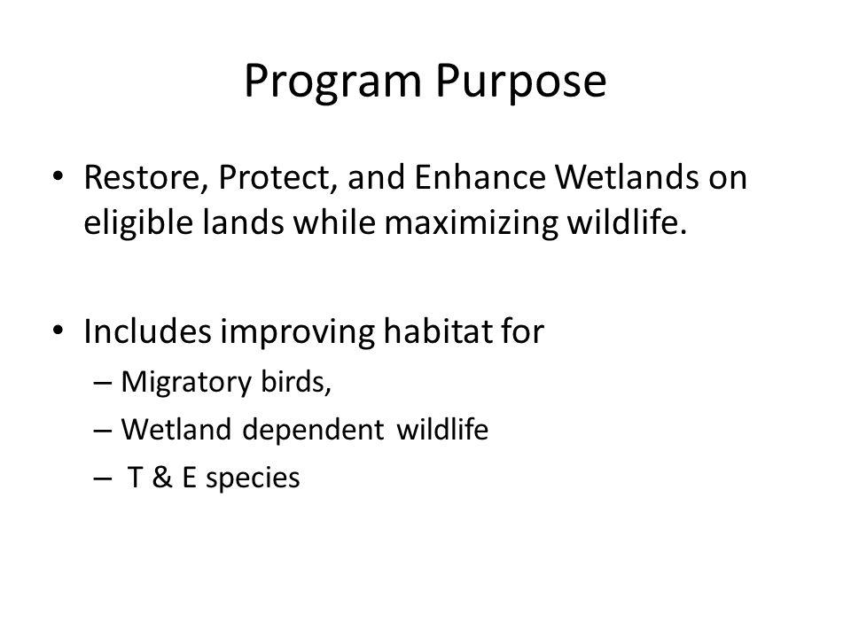 Program Purpose Restore, Protect, and Enhance Wetlands on eligible lands while maximizing wildlife. Includes improving habitat for – Migratory birds,