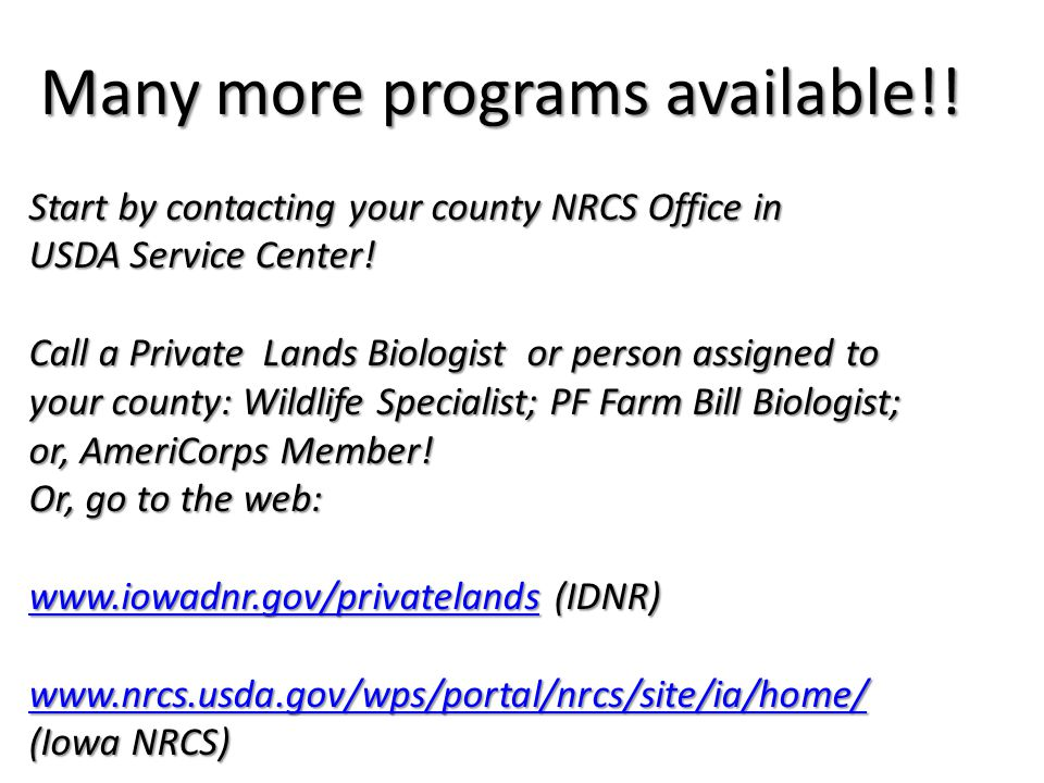 Many more programs available!! Start by contacting your county NRCS Office in USDA Service Center! Call a Private Lands Biologist or person assigned t