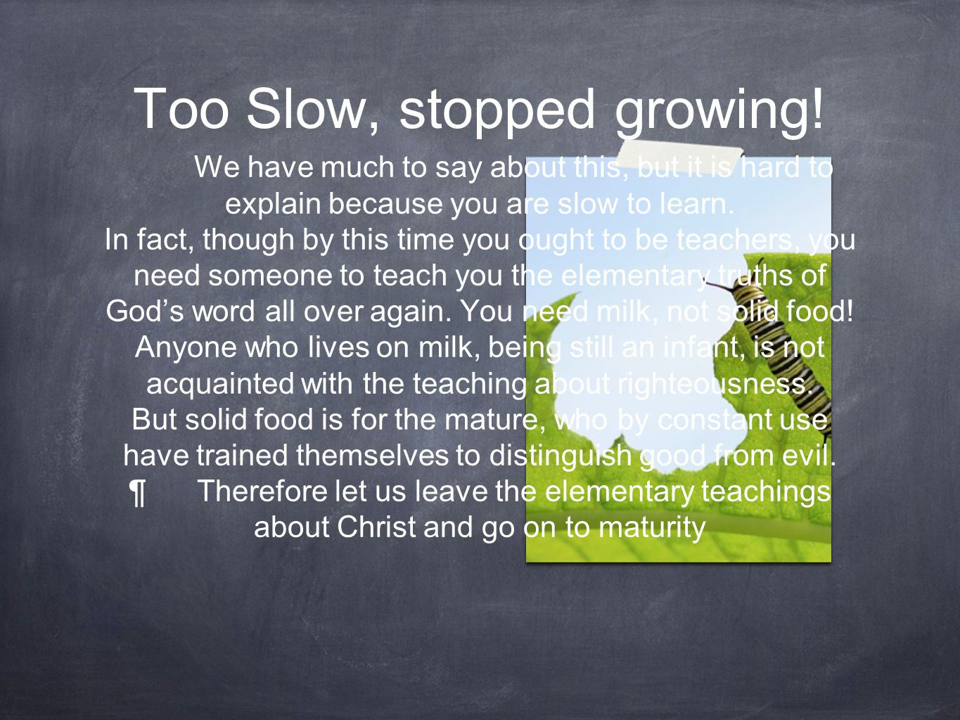 Too Slow, stopped growing.