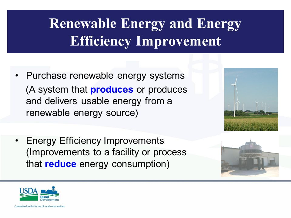 Renewable Energy and Energy Efficiency Improvement Purchase renewable energy systems (A system that produces or produces and delivers usable energy from a renewable energy source) Energy Efficiency Improvements (Improvements to a facility or process that reduce energy consumption)