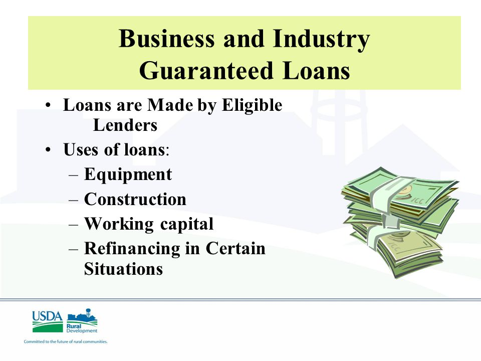 Business and Industry Guaranteed Loans Loans are Made by Eligible Lenders Uses of loans: –Equipment –Construction –Working capital –Refinancing in Certain Situations