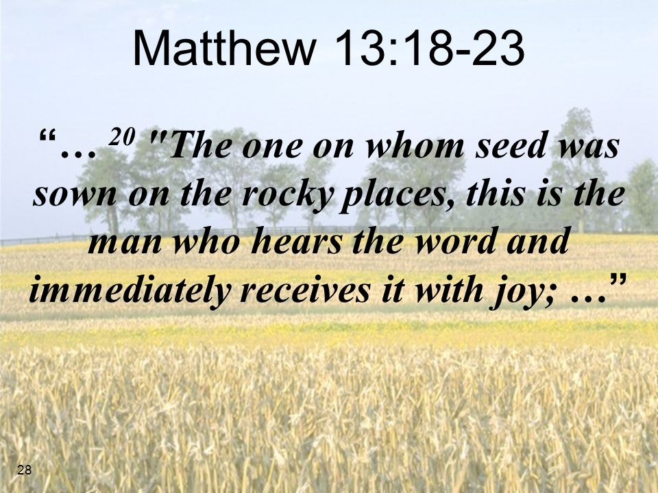 28 Matthew 13:18-23 … 20 The one on whom seed was sown on the rocky places, this is the man who hears the word and immediately receives it with joy; …