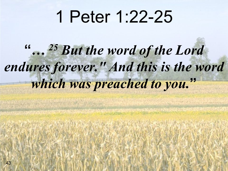 43 1 Peter 1:22-25 … 25 But the word of the Lord endures forever. And this is the word which was preached to you.