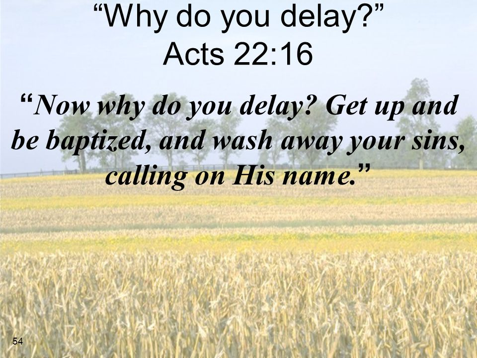 54 Why do you delay? Acts 22:16 Now why do you delay.