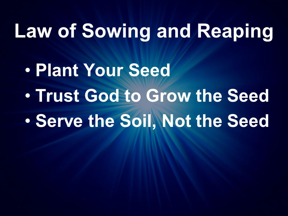 Law of Sowing and Reaping Plant Your Seed Trust God to Grow the Seed Serve the Soil, Not the Seed