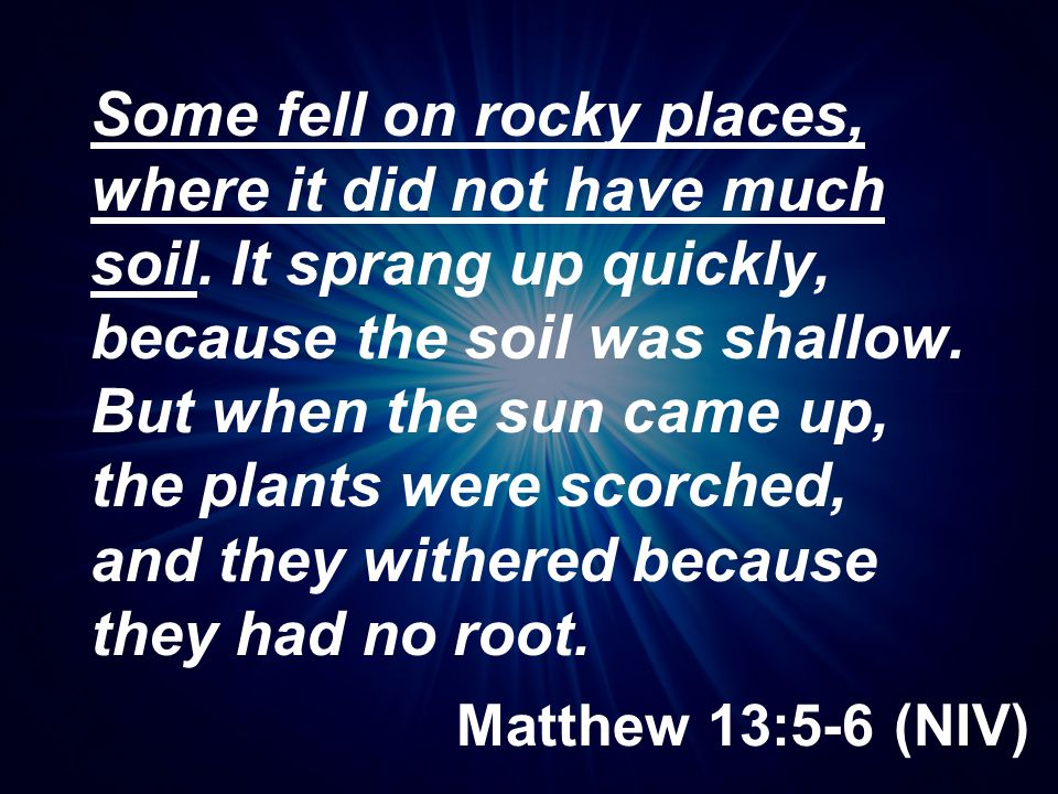 Matthew 13:5-6 (NIV) Some fell on rocky places, where it did not have much soil. It sprang up quickly, because the soil was shallow. But when the sun