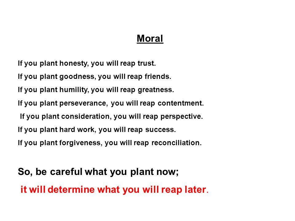 Moral If you plant honesty, you will reap trust.If you plant goodness, you will reap friends.