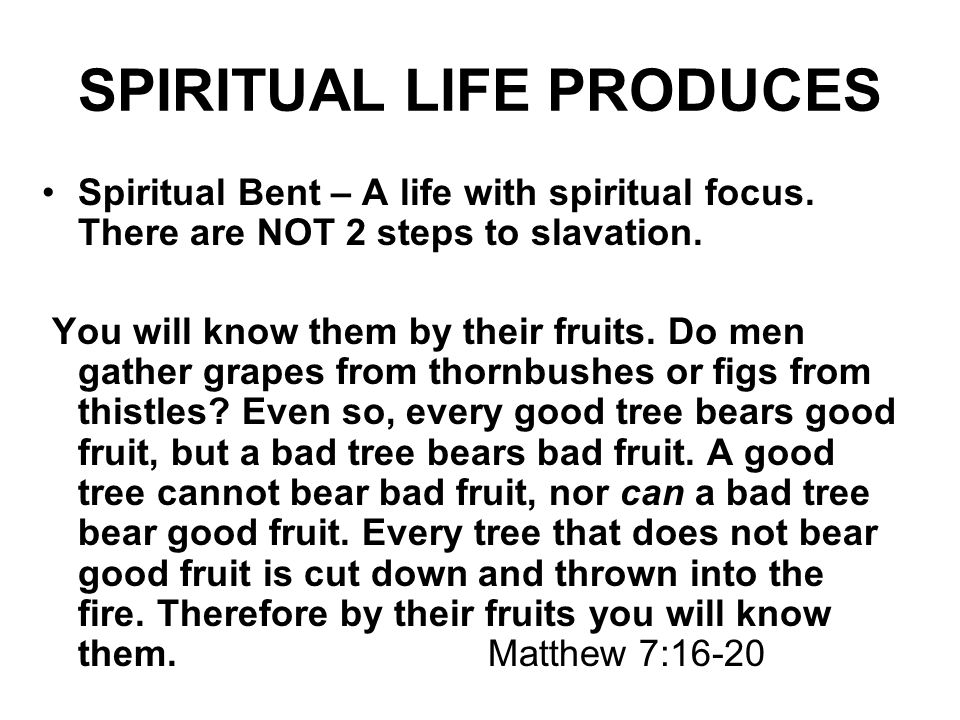 SPIRITUAL LIFE PRODUCES Spiritual Bent – A life with spiritual focus. There are NOT 2 steps to slavation. You will know them by their fruits. Do men g