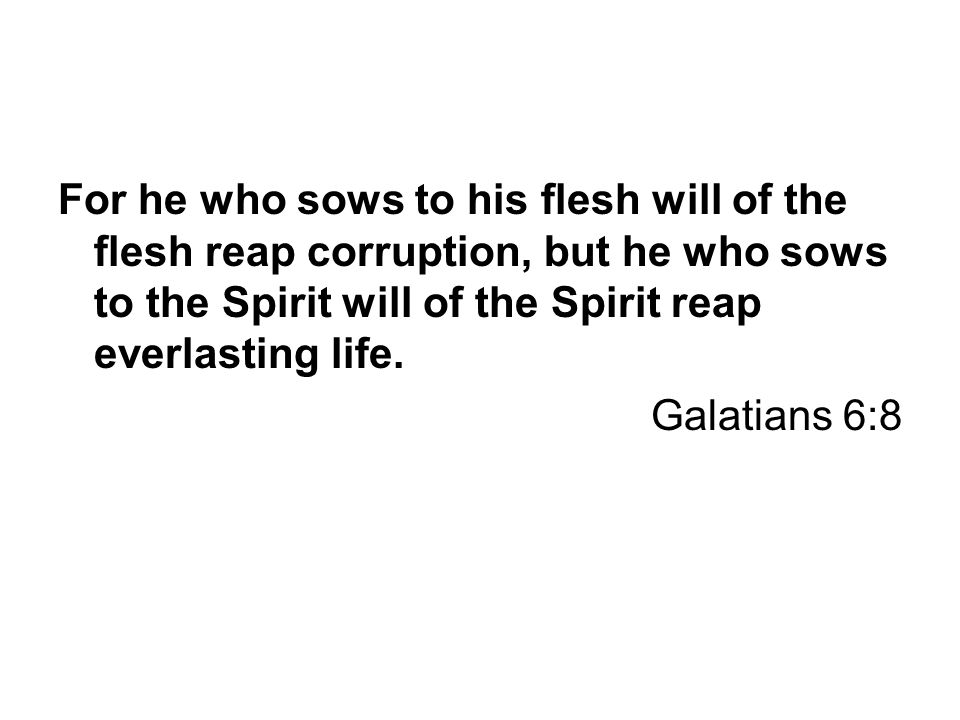 For he who sows to his flesh will of the flesh reap corruption, but he who sows to the Spirit will of the Spirit reap everlasting life. Galatians 6:8