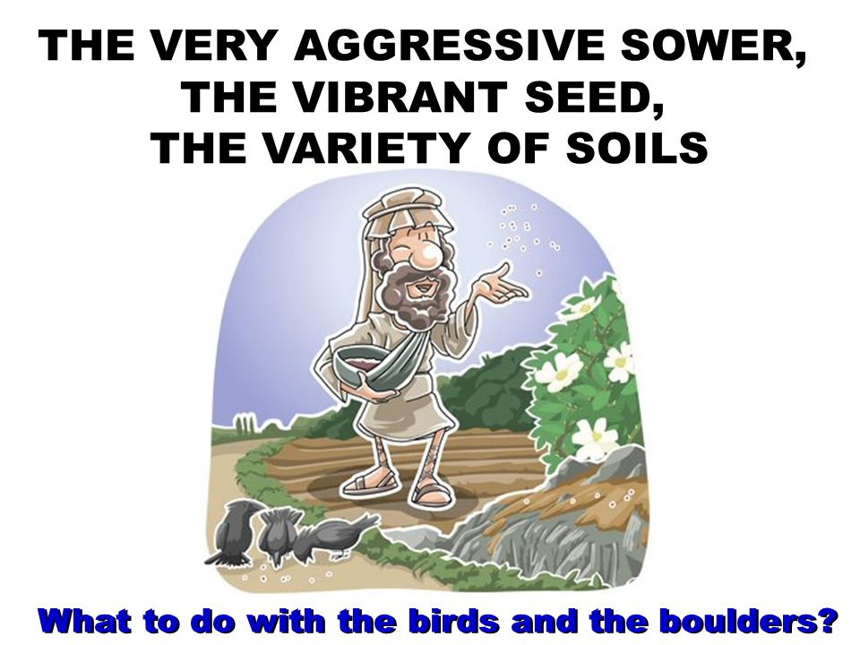 THE VERY AGGRESSIVE SOWER, THE VIBRANT SEED, THE VARIETY OF SOILS What to do with the birds and the boulders?