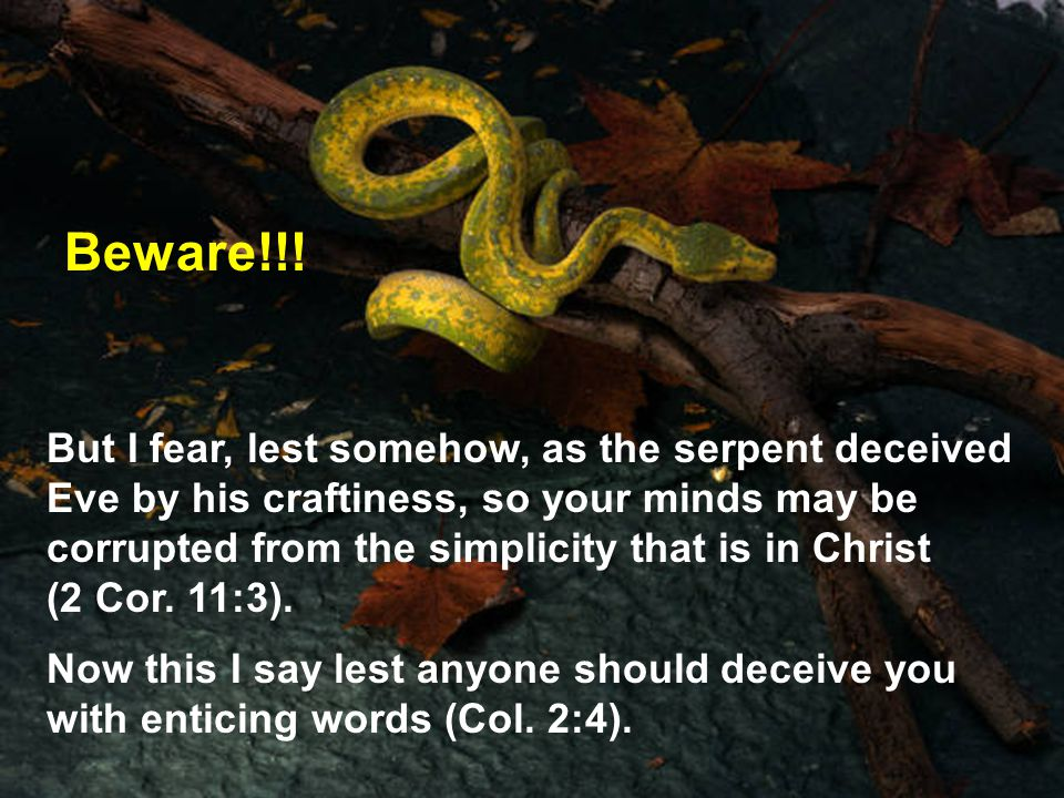 But I fear, lest somehow, as the serpent deceived Eve by his craftiness, so your minds may be corrupted from the simplicity that is in Christ (2 Cor.