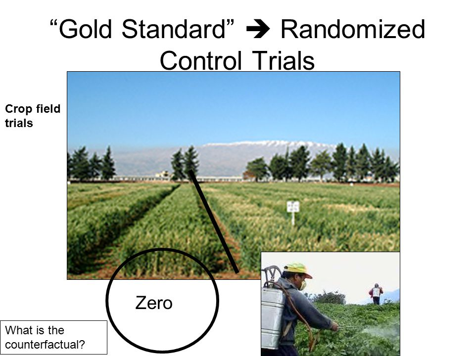 Gold Standard  Randomized Control Trials Zero Crop field trials What is the counterfactual?