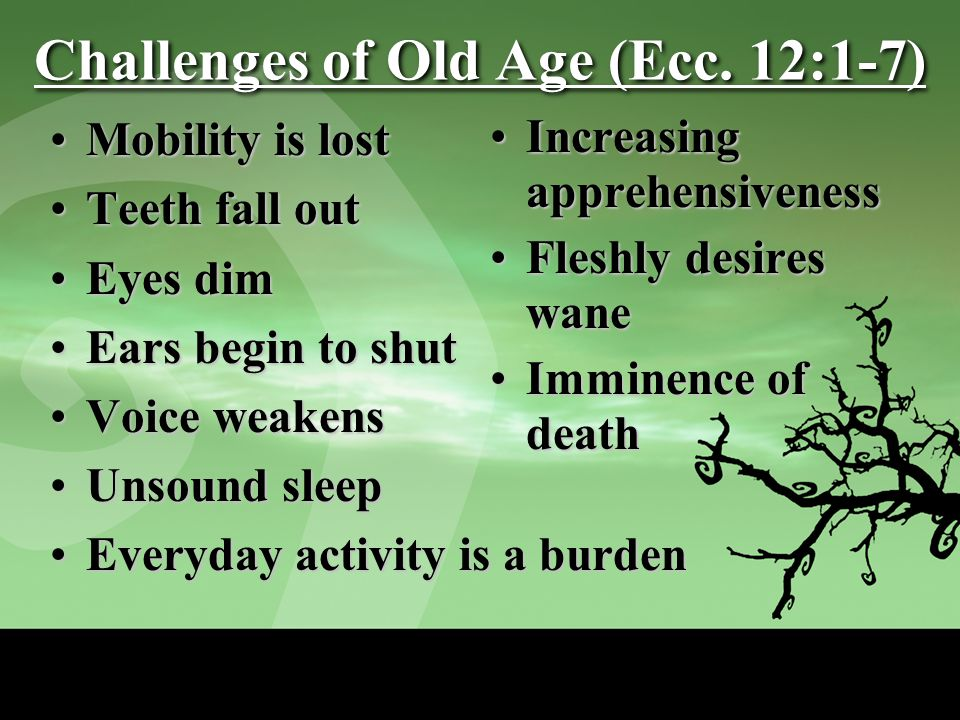 Challenges of Old Age (Ecc.
