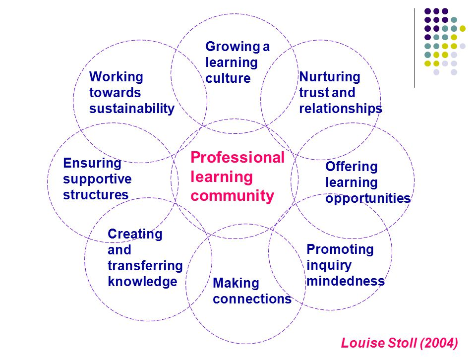 Louise Stoll (2004) Professional learning community Working towards sustainability Ensuring supportive structures Creating and transferring knowledge Offering learning opportunities Growing a learning culture Nurturing trust and relationships Making connections Promoting inquiry mindedness