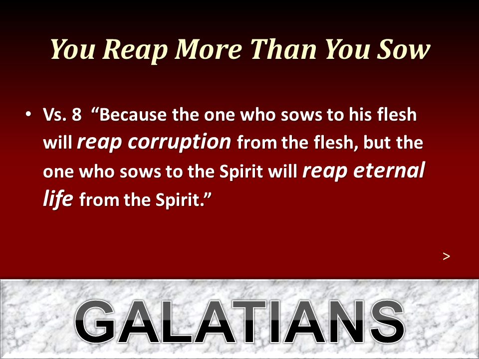 """You Reap More Than You Sow Vs. 8 """"Because the one who sows to his flesh will reap corruption from the flesh, but the one who sows to the Spirit will r"""