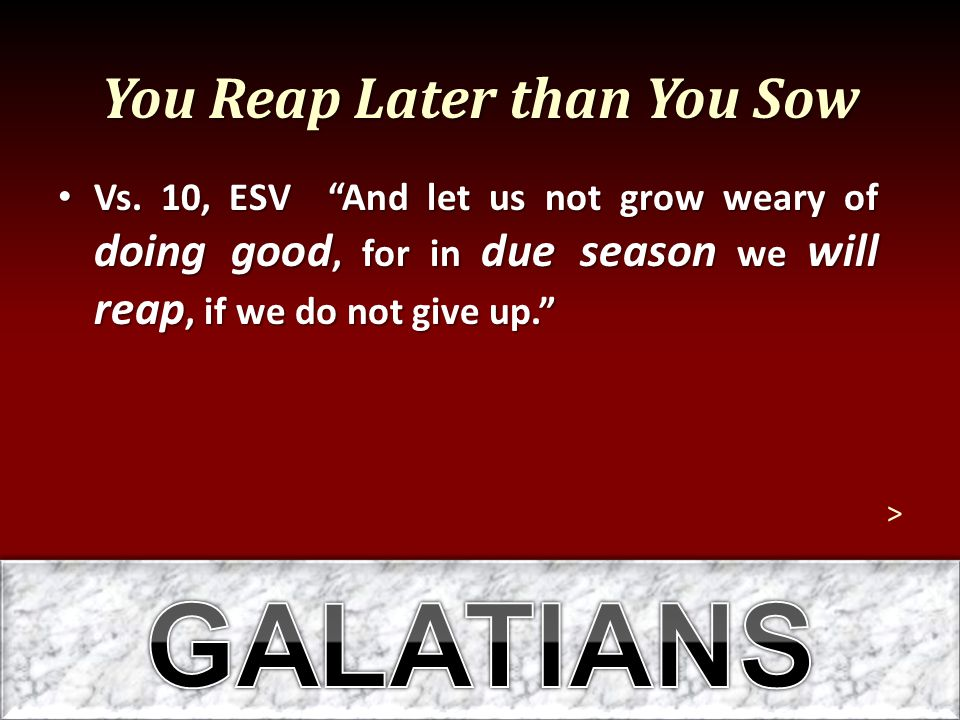 You Reap Later than You Sow Vs.