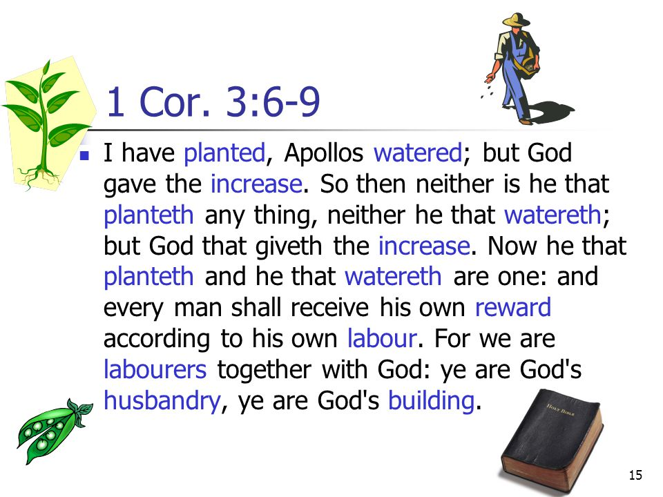 15 1 Cor.3:6-9 I have planted, Apollos watered; but God gave the increase.