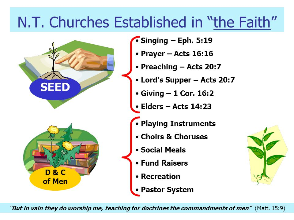 N.T.Churches Established in the Faith SEED Singing – Eph.
