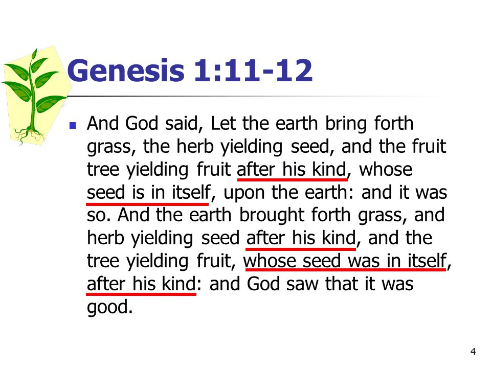 4 Genesis 1:11-12 And God said, Let the earth bring forth grass, the herb yielding seed, and the fruit tree yielding fruit after his kind, whose seed is in itself, upon the earth: and it was so.