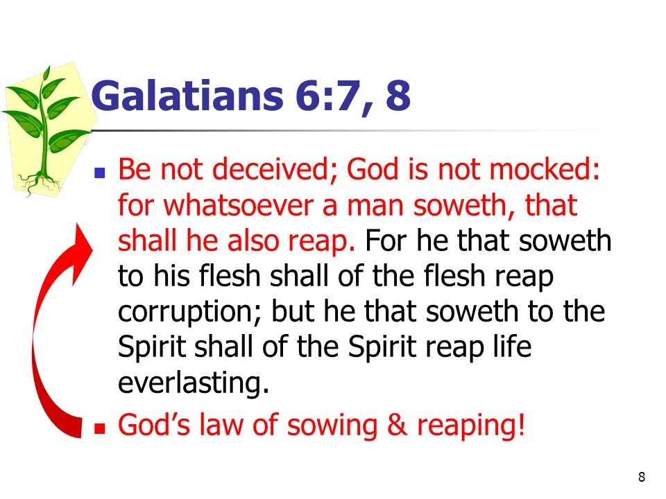 8 Galatians 6:7, 8 Be not deceived; God is not mocked: for whatsoever a man soweth, that shall he also reap.