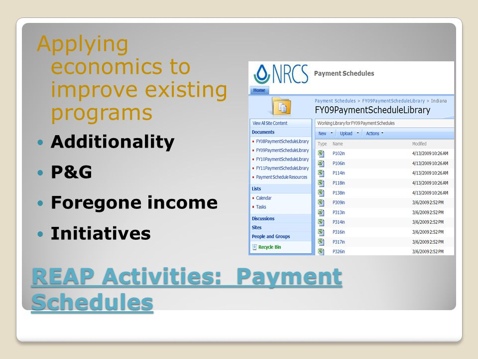 REAP Activities: Payment Schedules Applying economics to improve existing programs Additionality P&G Foregone income Initiatives
