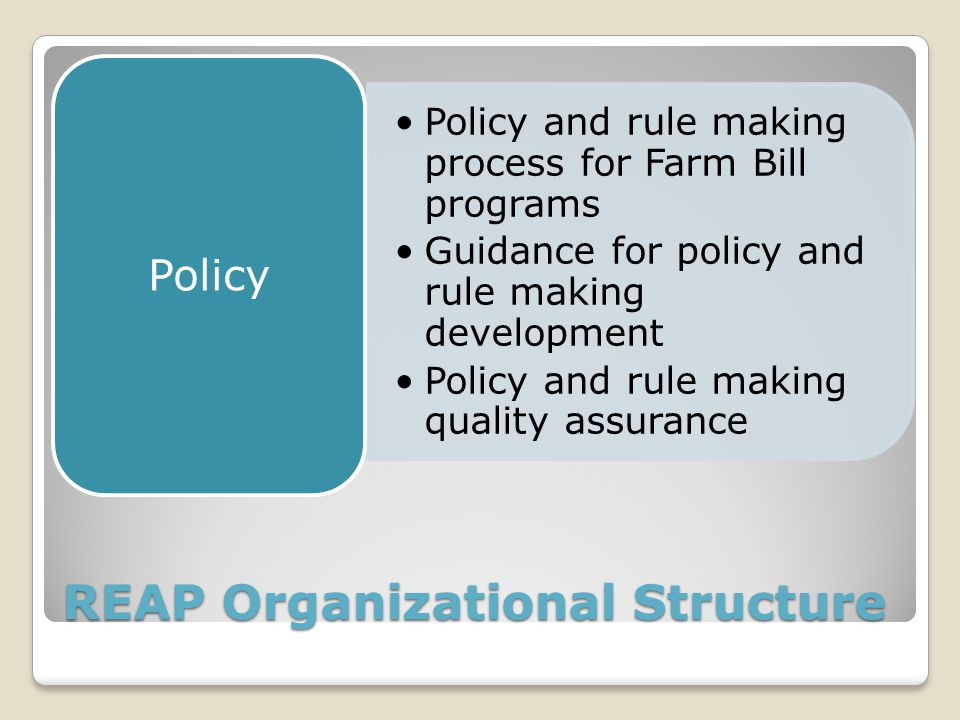 REAP Organizational Structure Policy and rule making process for Farm Bill programs Guidance for policy and rule making development Policy and rule making quality assurance Policy
