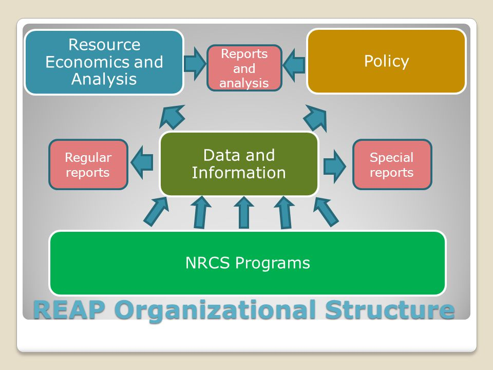 REAP Organizational Structure Data and Information Resource Economics and Analysis PolicyNRCS Programs Regular reports Special reports Reports and analysis