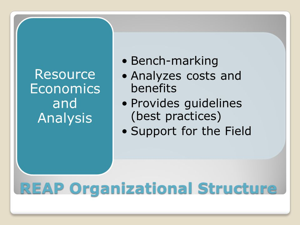 REAP Organizational Structure Bench-marking Analyzes costs and benefits Provides guidelines (best practices) Support for the Field Resource Economics and Analysis