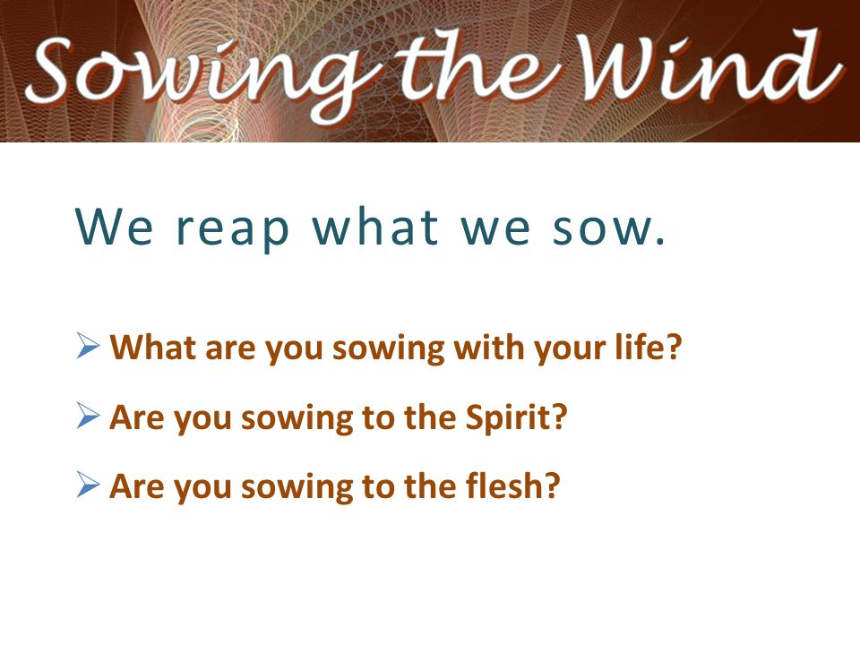 We reap what we sow.  What are you sowing with your life?  Are you sowing to the Spirit?  Are you sowing to the flesh?