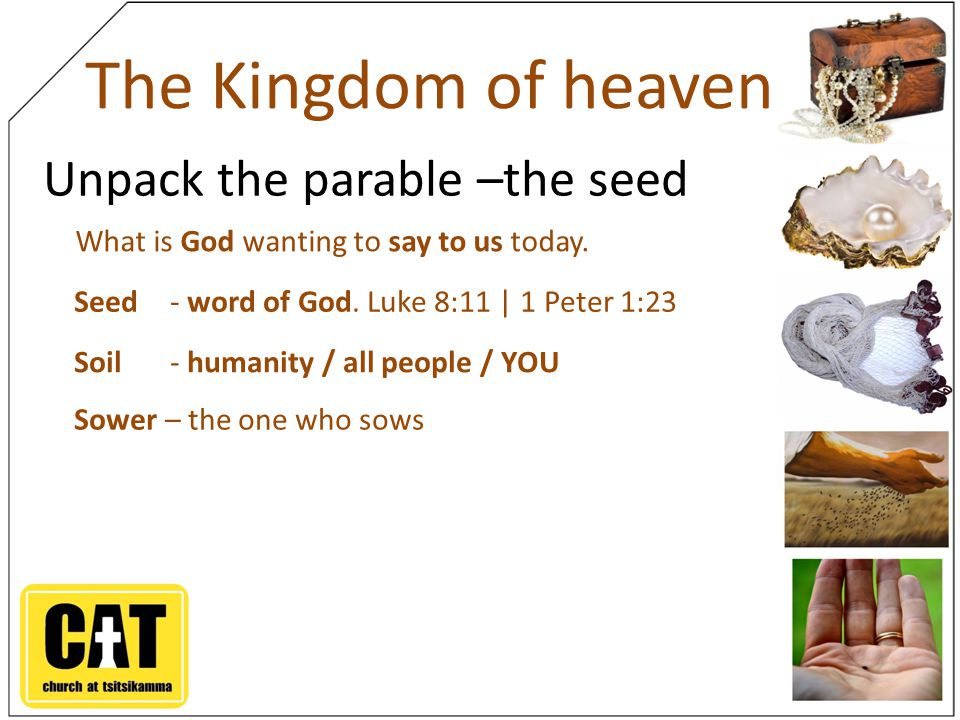 The Kingdom of heaven Unpack the parable –the seed What is God wanting to say to us today.