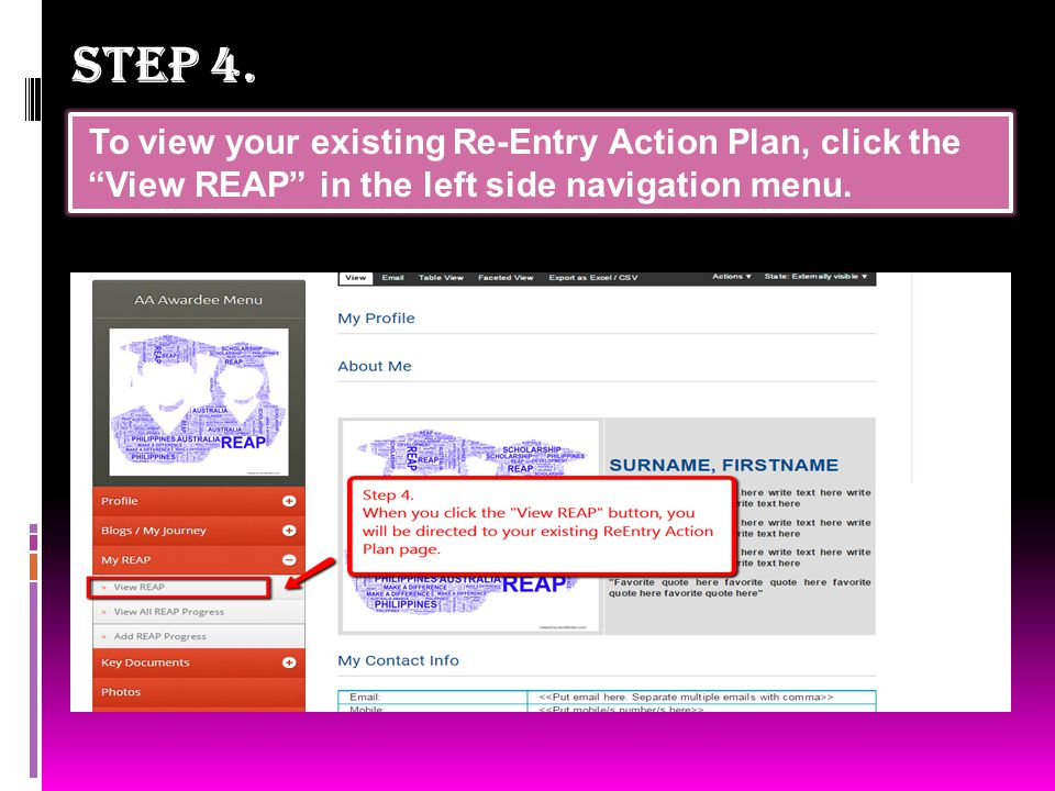  How to edit your Re-Entry Action Plan .