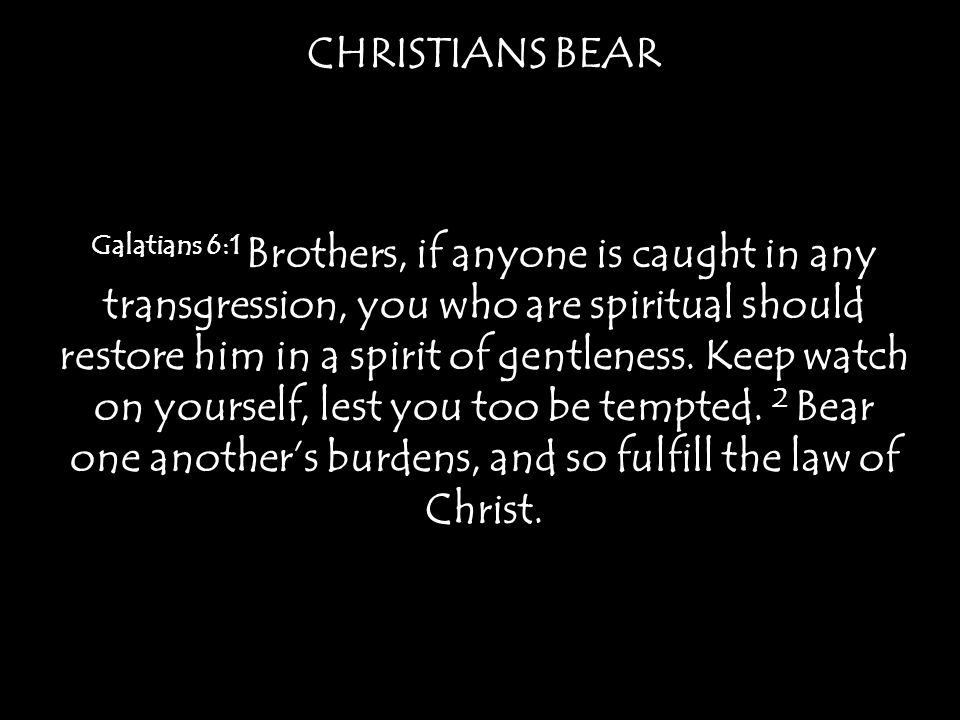 CHRISTIANS BEAR Matthew 23:3b For [the Pharisees] preach, but do not practice.