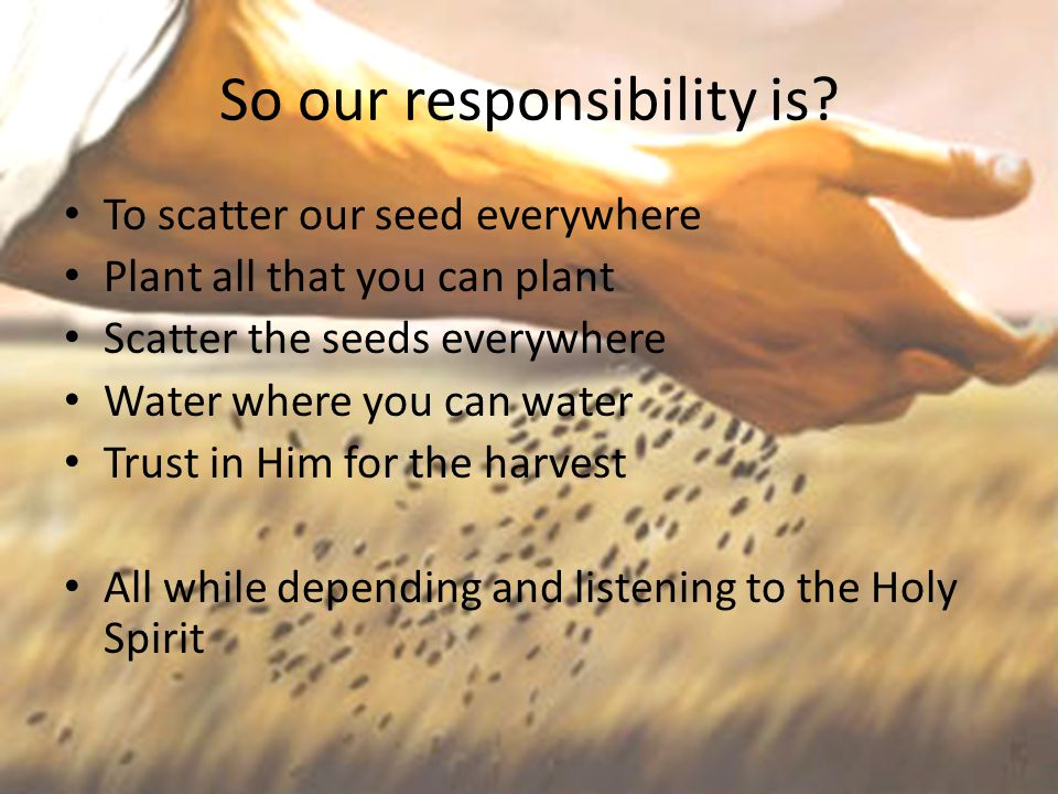 So our responsibility is? To scatter our seed everywhere Plant all that you can plant Scatter the seeds everywhere Water where you can water Trust in