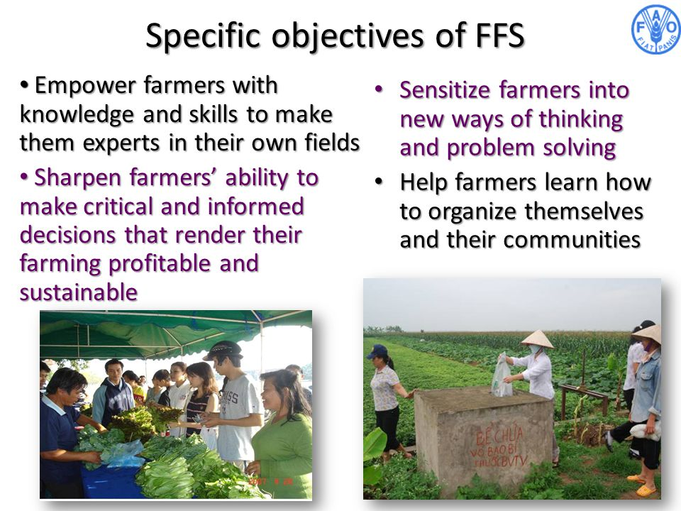Specific objectives of FFS Empower farmers with knowledge and skills to make them experts in their own fields Empower farmers with knowledge and skill