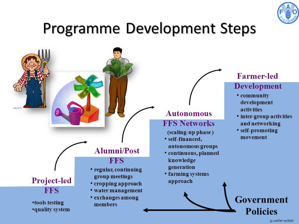 Programme Development Steps Project-led FFS Alumni/Post FFS Autonomous FFS Networks community development activities inter-group activities and networ