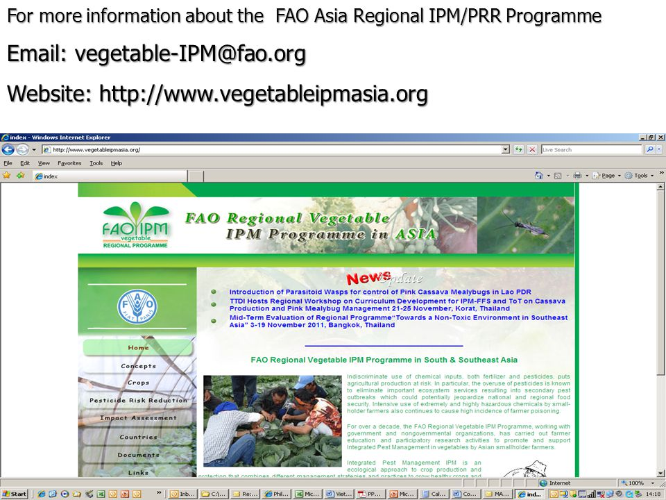 For more information about the FAO Asia Regional IPM/PRR Programme Email: vegetable-IPM@fao.org Website: http://www.vegetableipmasia.org