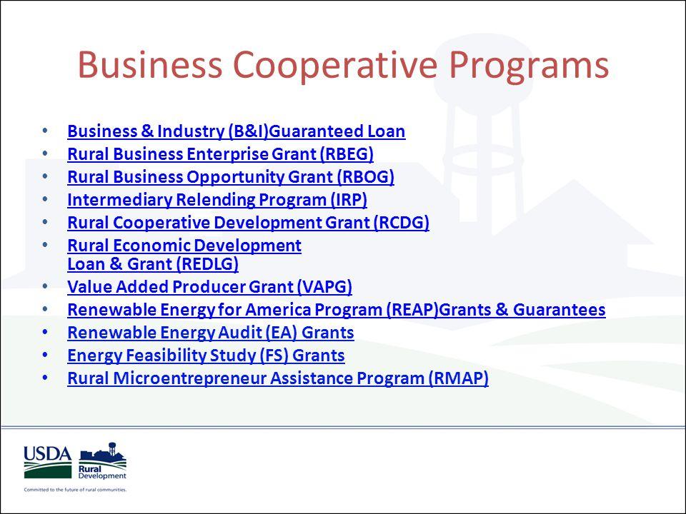Business Cooperative Programs Business & Industry (B&I)Guaranteed Loan Rural Business Enterprise Grant (RBEG) Rural Business Opportunity Grant (RBOG)