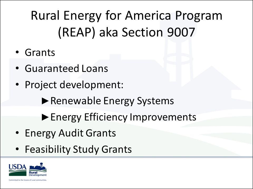 Rural Energy for America Program (REAP) aka Section 9007 Grants Guaranteed Loans Project development: ► Renewable Energy Systems ► Energy Efficiency I