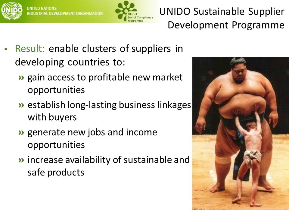 UNIDO Sustainable Supplier Development Programme  Result: enable clusters of suppliers in developing countries to: » gain access to profitable new ma