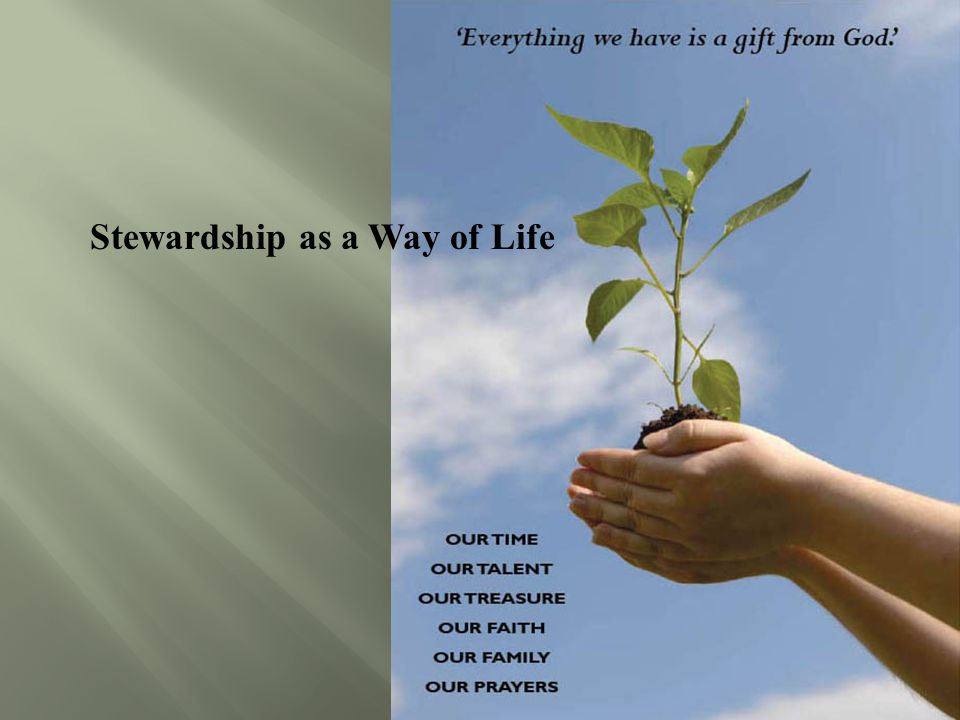 Stewardship as a Way of Life