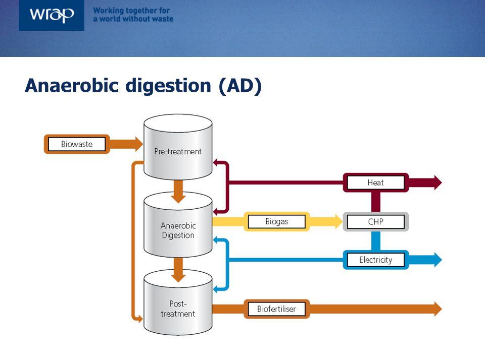 Anaerobic digestion (AD)