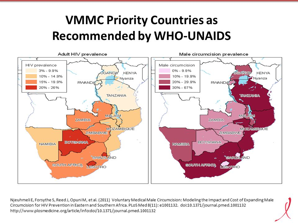 VMMC Priority Countries as Recommended by WHO-UNAIDS Njeuhmeli E, Forsythe S, Reed J, Opuni M, et al.
