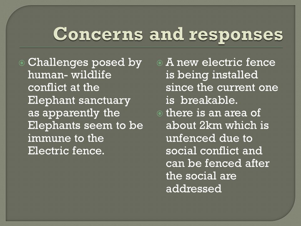  Challenges posed by human- wildlife conflict at the Elephant sanctuary as apparently the Elephants seem to be immune to the Electric fence.