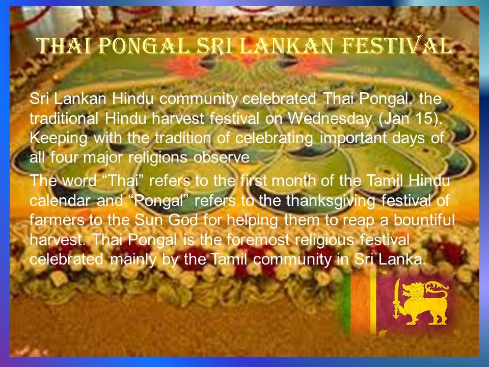Thai pongal Sri Lankan festival Sri Lankan Hindu community celebrated Thai Pongal, the traditional Hindu harvest festival on Wednesday (Jan 15).