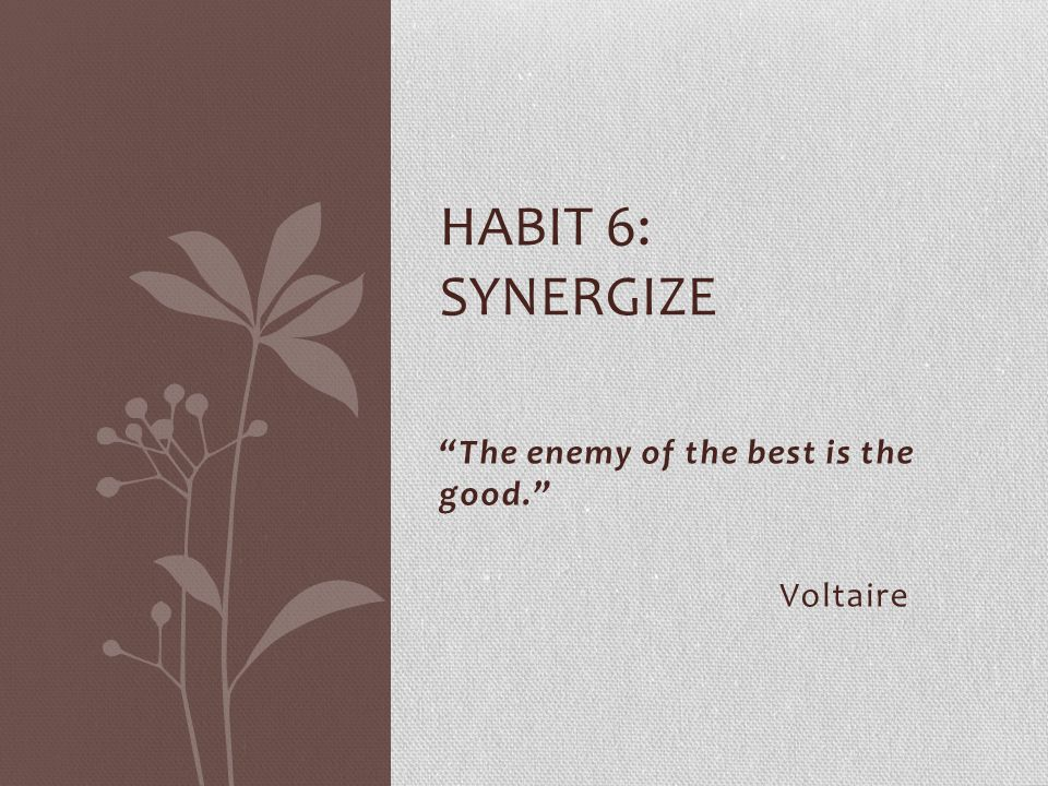 """""""The enemy of the best is the good."""" Voltaire HABIT 6: SYNERGIZE"""